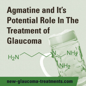 Agmatine-In-The-Treatment-Of-Glaucoma