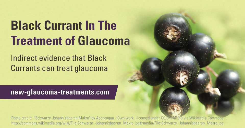 Black Currant – A Natural Source of Quercetin