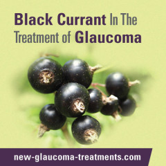 Black Currant In The Treatment of Glaucoma