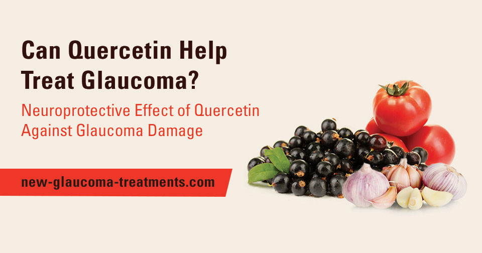 Neuroprotective Effect of Quercetin Against Glaucoma Damage