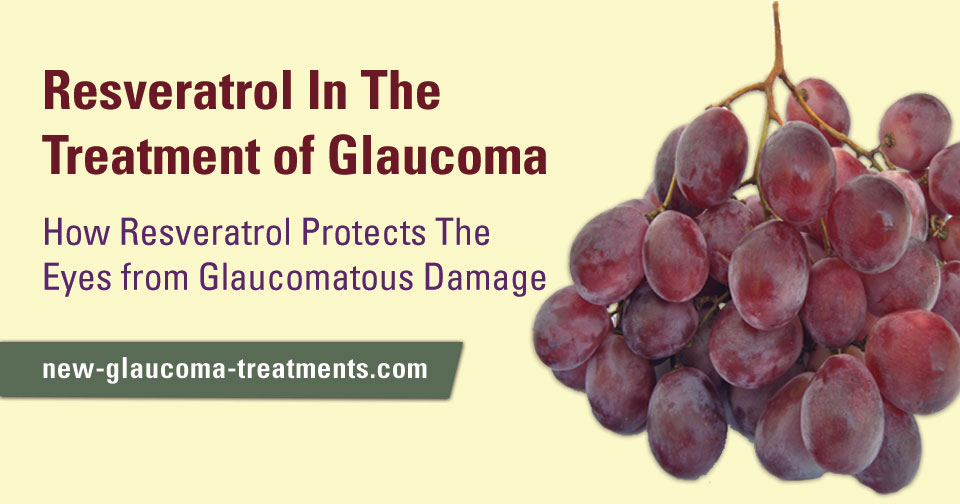 Resveratrol May Protect the Eyes from Glaucomatous Damage
