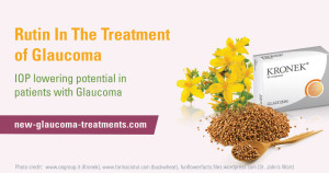 Rutin-In-The-Treatment-of-Glaucoma-