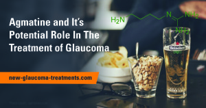 Agmatine In The Treatment of Glaucoma