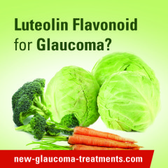 Luteolin Turns On Genes That May Prevent Glaucomatous Damage