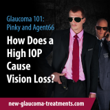 How Does a High IOP Cause Vision Loss?