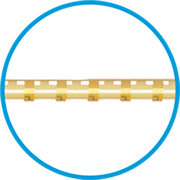 How Well Does the Stegmann Canal Expander® Work