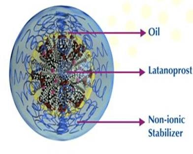 Swollen Micelle MicroemulsionTM (SMM)